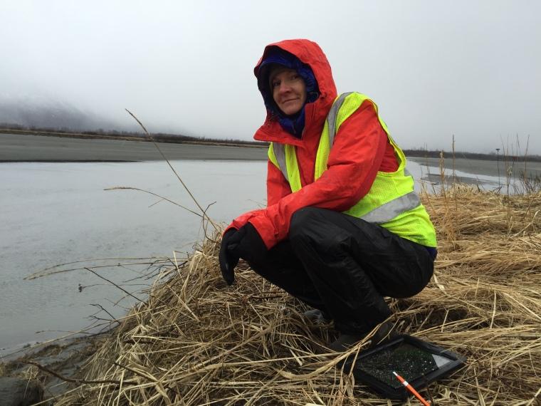 Alaska DOT&PF's Marine Mammal Monitoring App